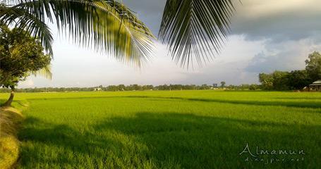 Nature of Dinajpur